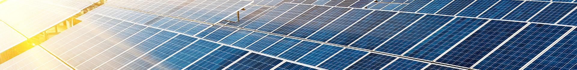 viele Reihen Solarzellen, die von der Sonne angestrahlt werden