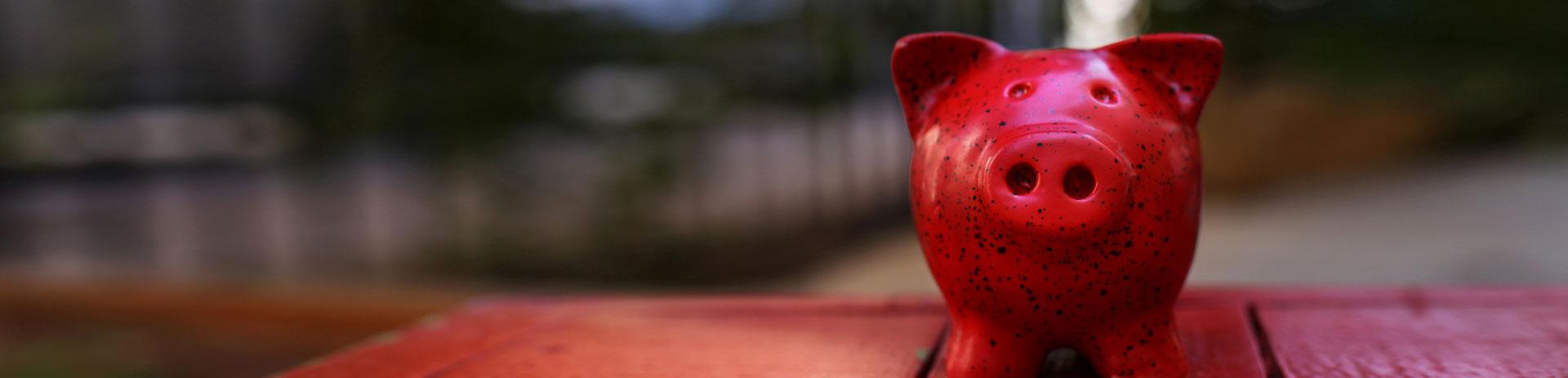 grünes Sparschweinchen; davor liegen einige Münzen