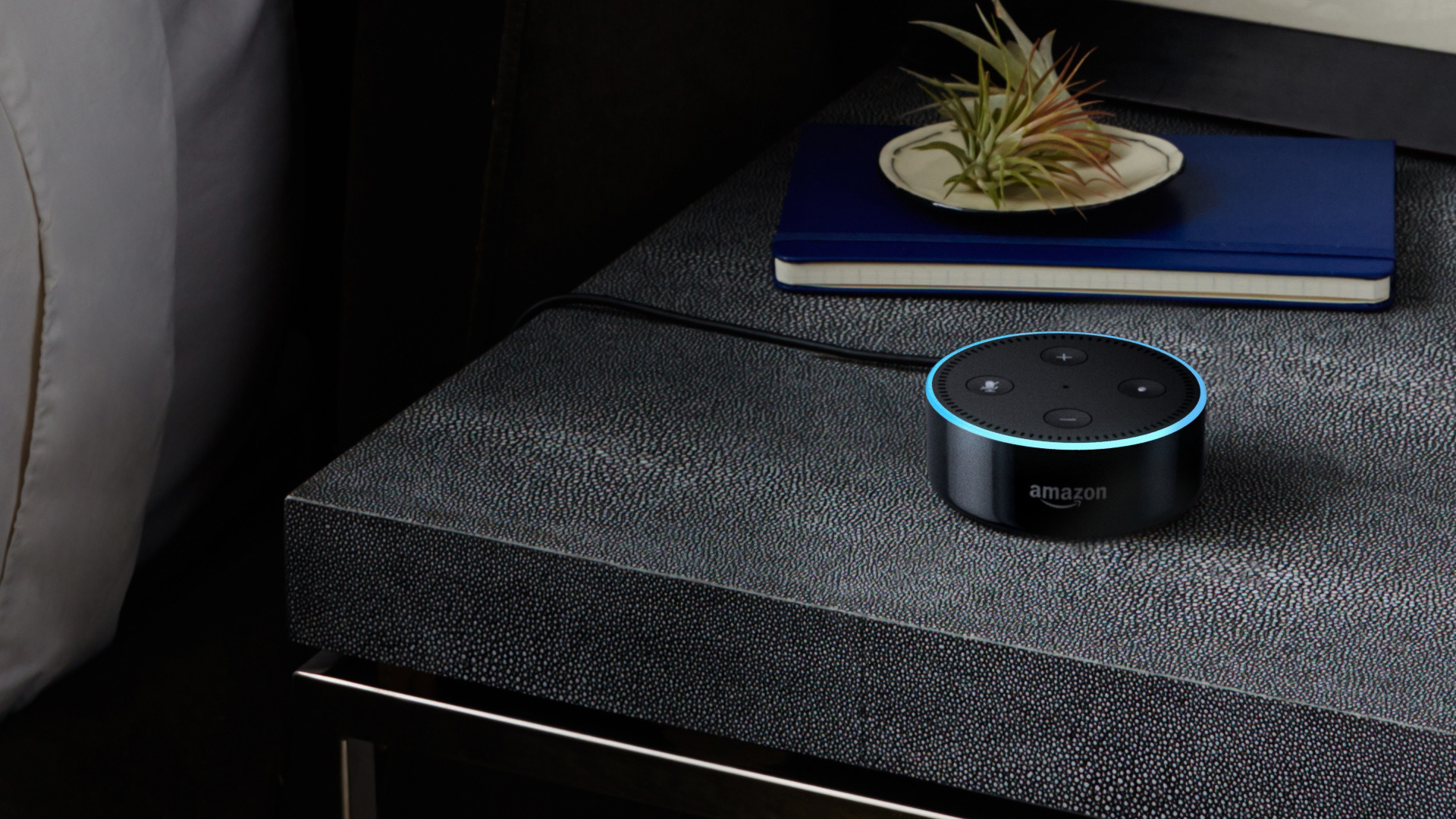Amazon Echo gratis