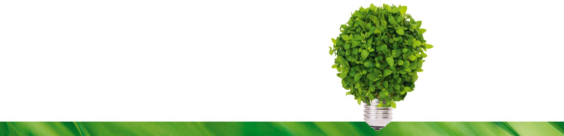 Glühbirne, die gänzlich mit grünen Blättern bedeckt ist