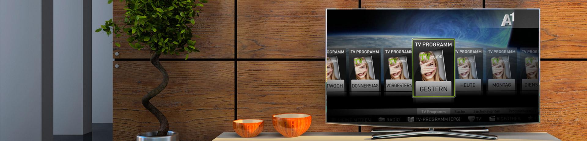 View Control: Online Videorecorder
