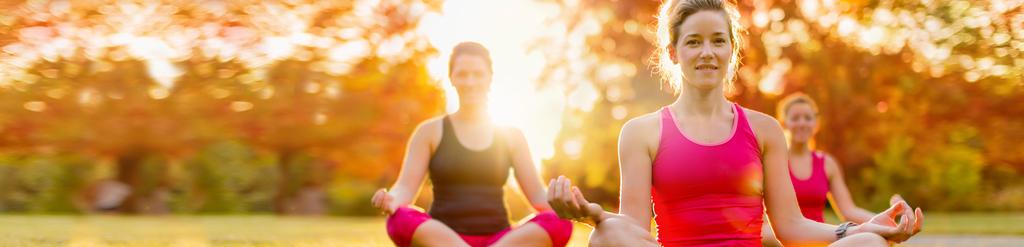 Junge Damen praktizieren Yoga auf grüner Wiese